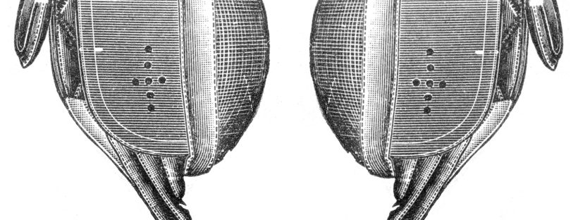 How to clean a fencing mask
